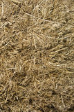 Straw for horses Royalty Free Stock Photos