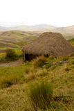 Straw hut in the Andes mountains Stock Photography