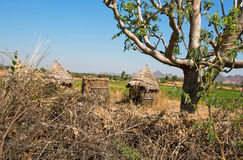 Straw hut in a poor village in the midst of nature Stock Photography