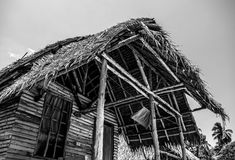 Straw hut in tropics. Black-white photo. Royalty Free Stock Images