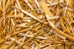 Straw for litter raw material Royalty Free Stock Image