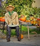 Straw man. With pumpkins stock photos
