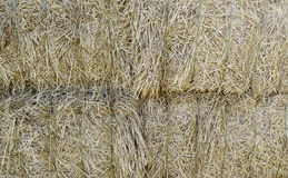 Straw Mountain. Close to a pile of straw on a farm Royalty Free Stock Photos