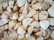 Straw Mushroom Royalty-vrije Stock Fotografie