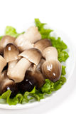 Straw mushroom in bowl Stock Image