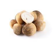 Straw mushroom Stock Images