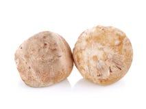Straw mushroom isolated on white background Stock Photos