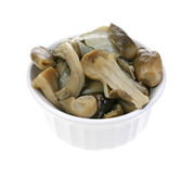 Straw mushrooms in cooking dish Royalty Free Stock Image