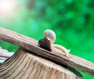 Straw mushrooms and snail Stock Photography