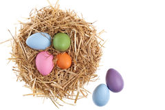 Straw nest with nice colored Easter eggs Royalty Free Stock Photo