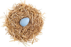 Straw nest with nice colored Easter eggs Royalty Free Stock Image