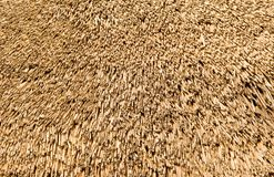 Straw On A Roof Royalty Free Stock Photos