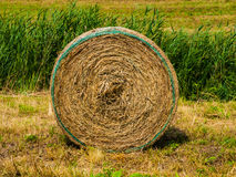 Straw package Stock Image