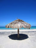 Straw palapa umbrella standing in the sand on a beach overlooking the Sea of Cortez in Mexico. Stock Images