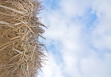 Straw parasol and sky Royalty Free Stock Photography