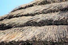 Straw parasol, texture. Stock Photo