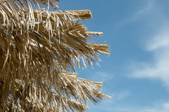 Straw parasols against the sky Royalty Free Stock Image