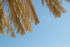 Straw parasols against the sky Stock Photos