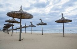 Straw parasols in front row. On sandy beach by Mediterranean ocean Royalty Free Stock Image
