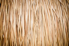 Straw pattern background Royalty Free Stock Images