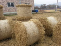 Straw pile farm agriculture Stock Photos