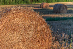 Straw pressed into bales. Rural views summer evening Stock Image