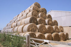Straw Pyramid. Straw bales stacked in a pyramid stock photo