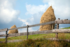 Straw reek. Two straw reeks with wood in front Royalty Free Stock Image