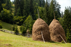 Straw reek Royalty Free Stock Image