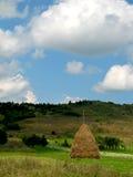 Straw reek. A single straw reek in the beautiful field Stock Images