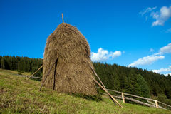 Straw reek. Sustained by wood logs Royalty Free Stock Photo