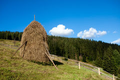 Straw reek. Sustained by wood logs Stock Images