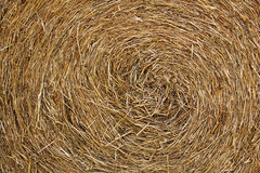 Straw rice Royalty Free Stock Images
