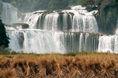 Straw in rice field front of Datian waterfall in China. Datian waterfall ( Virtuous Heaven waterfall )was said to be Asia's largest transnational waterfall Stock Photos