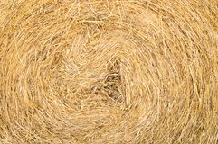 Straw roll background texture, close-up. Closeup of golden straw roll background texture royalty free stock image