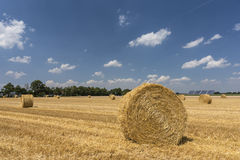 Straw roll bales with crop field, photovoltaic panel and blue sky in background Stock Image
