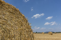 Straw roll bales detail with crop field, photovoltaic panel and blue sky in background Stock Image