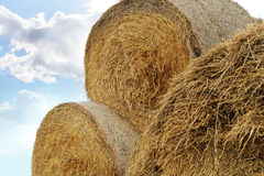 Straw roll bales Royalty Free Stock Image