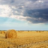 straw in roll on the field and low dramatic cloouds in sunset stock image