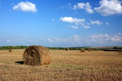Straw in a roll of the slant field Royalty Free Stock Photography