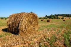 Straw Rolls Royalty Free Stock Image