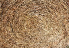 Straw Rolls. View of the  straw roll Stock Photography
