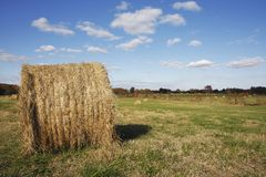 Straw Rolls. Rural landscape with straw rolls Royalty Free Stock Photos