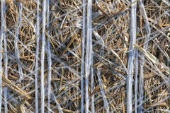 Straw rolls - background - texture stock images