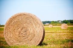 Straw rolls on farmer field Royalty Free Stock Photo