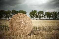 Straw rolls Stock Images
