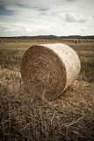 Straw rolls Royalty Free Stock Photos