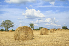 Straw rolls on harvested field, central France Stock Images