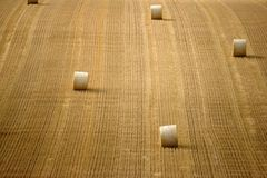 Straw rolls Stock Photography