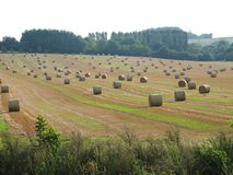 Straw rolls ind the landscape Royalty Free Stock Photography